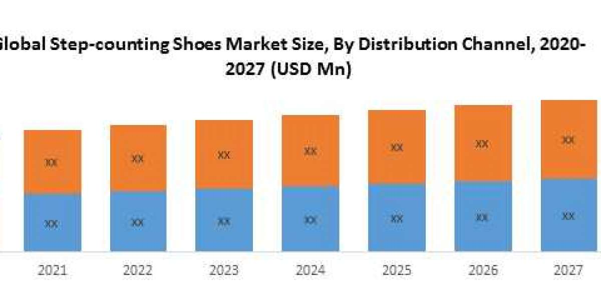 Step-counting Shoes Market Overview: 2020-2027