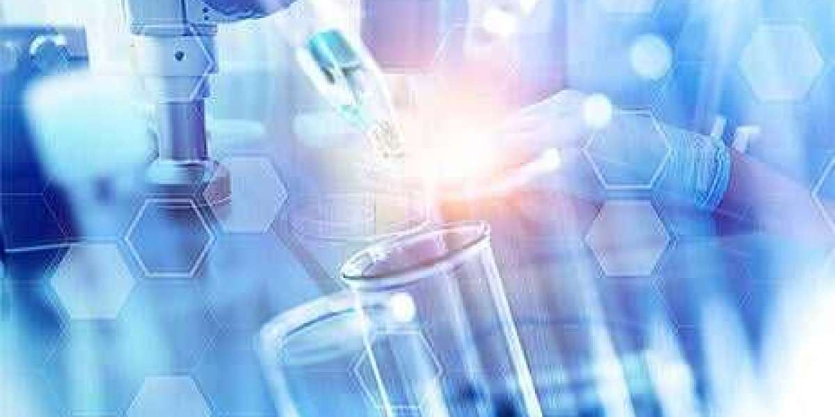 Sludge Treatment Chemicals Market – Industry Analysis and Forecast 2019-2026